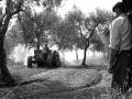 Azienda Agricola Vincenzo Ricchioni - Palo del Colle - aratura dei campi - tra passato e presente